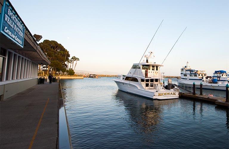 Things to do dana point harbor for Dana point pier fishing